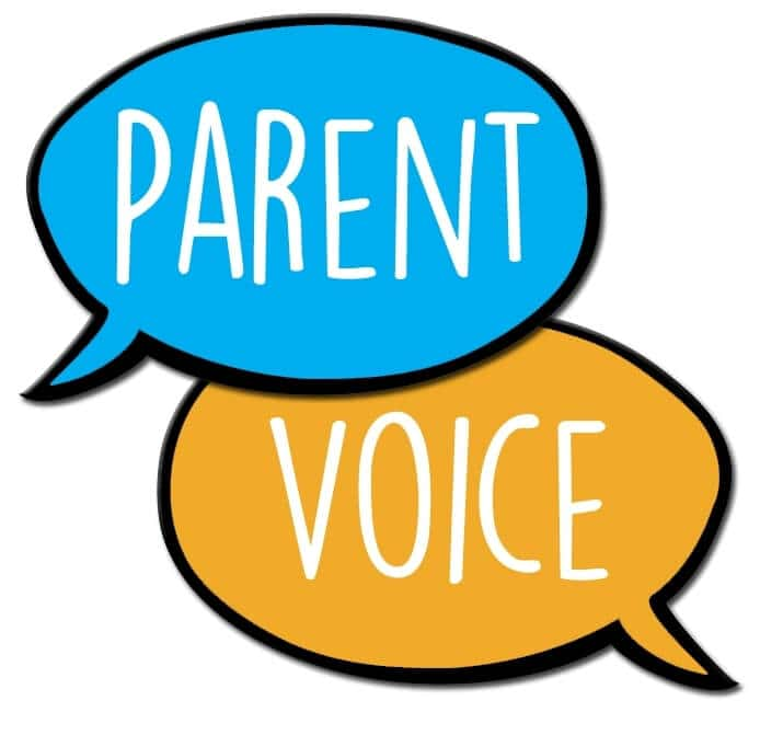 Parent Voice: knowledge, values and viewpoint